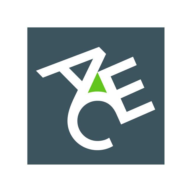 ACE partenaire Groupe AMI 3F